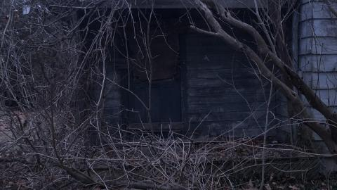 Shabby Shack cover photo