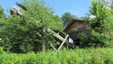 saw lake saw mill cover photo