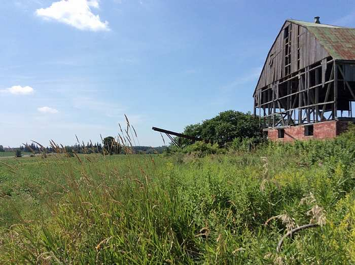 Just the barn 8/16/15 cover photo