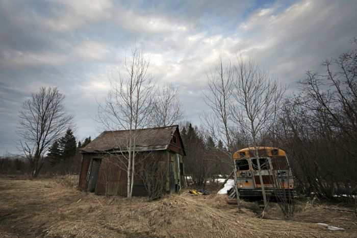 Old School Bus/Shack cover photo
