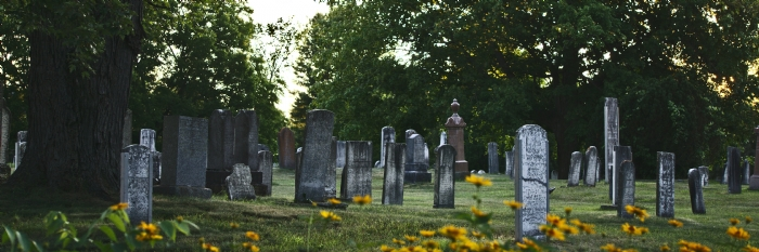 Craig St Cemetery  cover photo